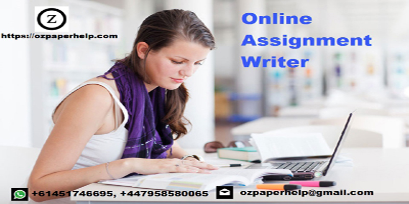 assignment writer