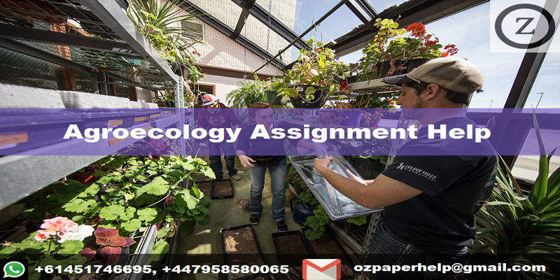 Agroecology Assignment Help