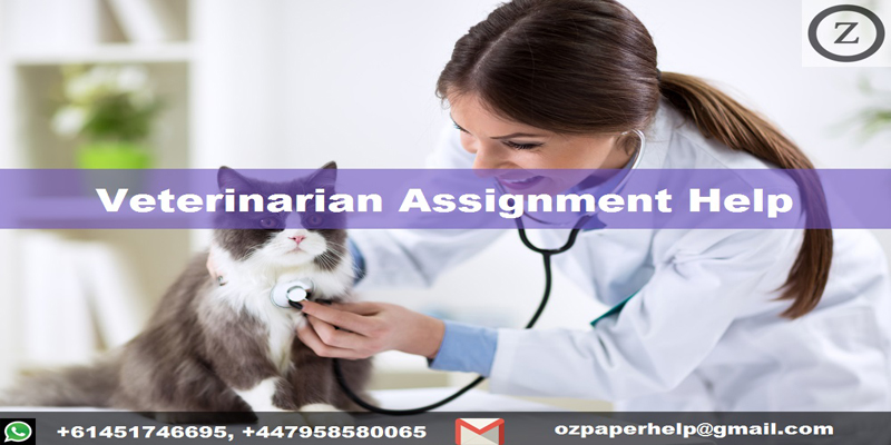 Veterinarian Assignment Help