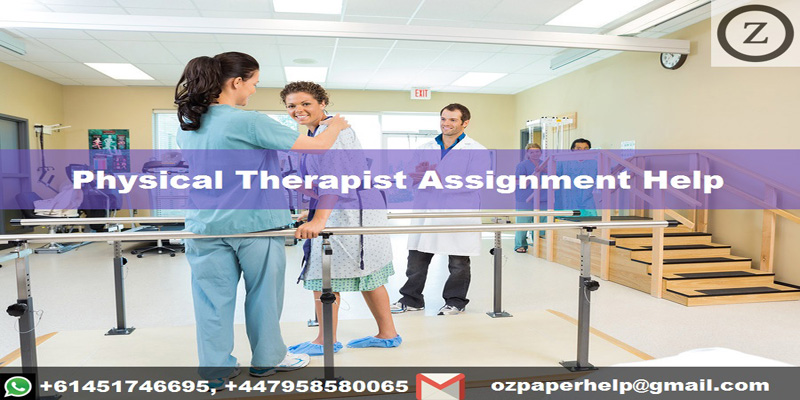 Physical Therapist Assignment Help