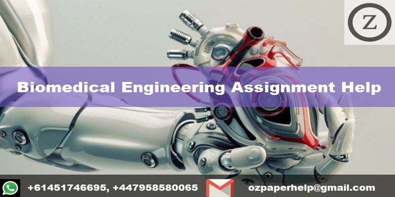 biomedical engineering assignment help