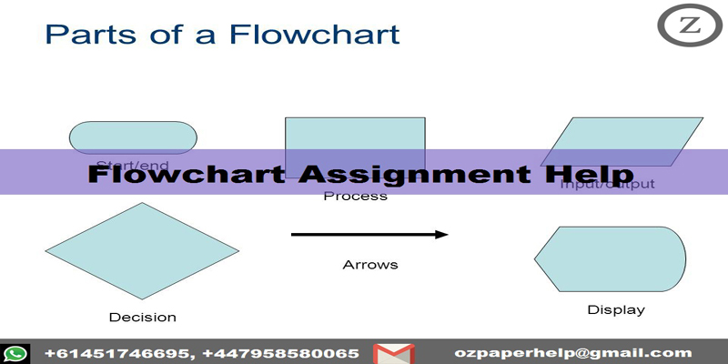 Flowchart Assignment Help