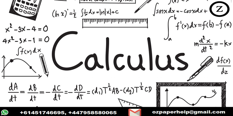 Calculus Coursework Help