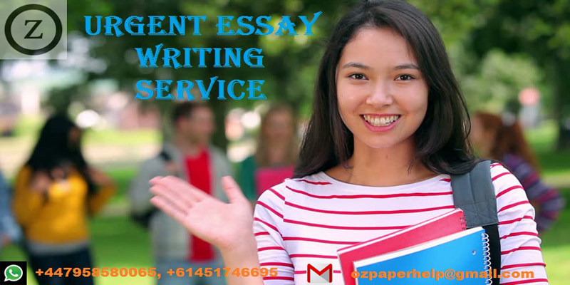 Urgent essay help