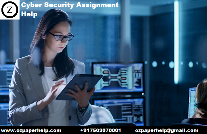 Cyber Security Assignment Help