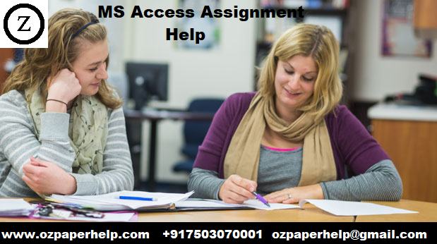 MS Access Assignment Help