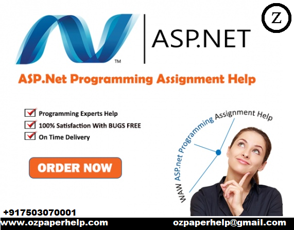 ASP Programming Assignment Help