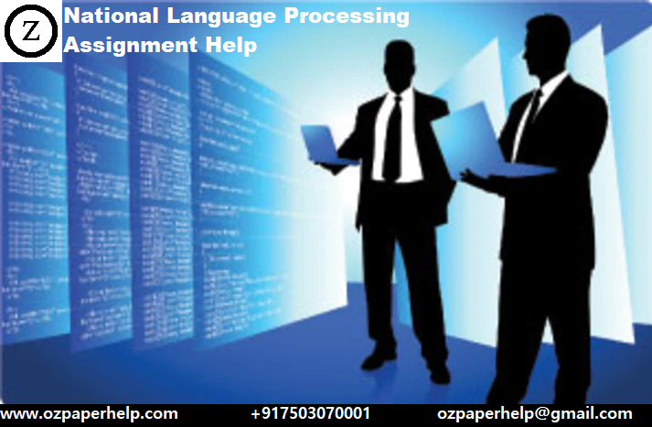 National Language Processing Assignment Help