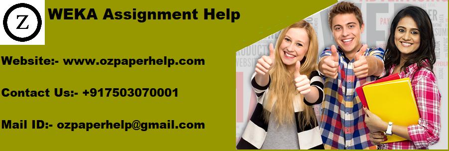 WEKA Assignment Help