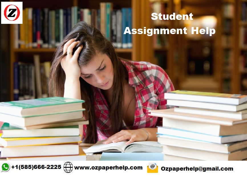Students and Assignments Help