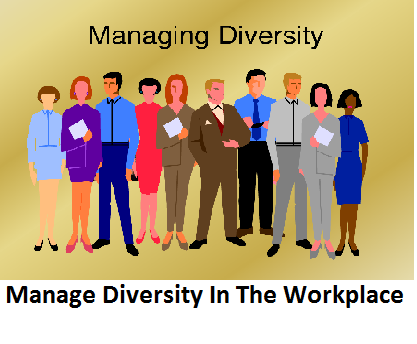 BSBDIV502 Manage Diversity In The Workplace