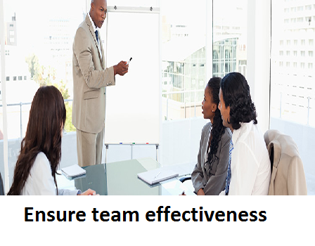 BSBWOR502B – Ensure team effectiveness
