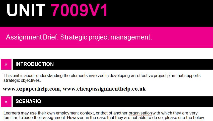 7009V1 Strategic project management