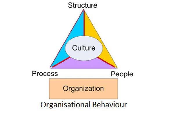 Organisation Behaviour Assignment