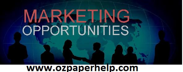 BSBMKG501 Marketing opportunities assignment