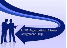 BSS057-6 Organization Assignment Help