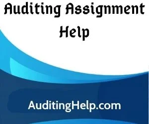 ACC3113 Audit Assignment Help