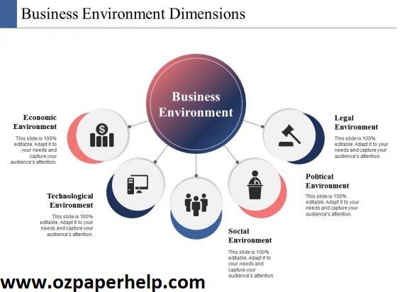 HC3031Business Environment Assignment