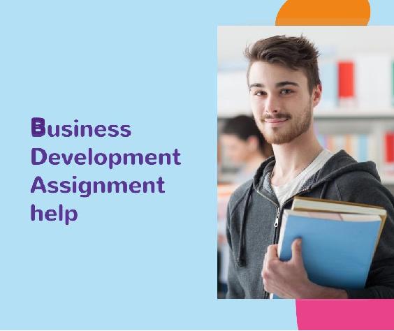 Business Development Assigment Help