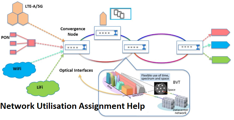 Network Utilisation Assignment Help