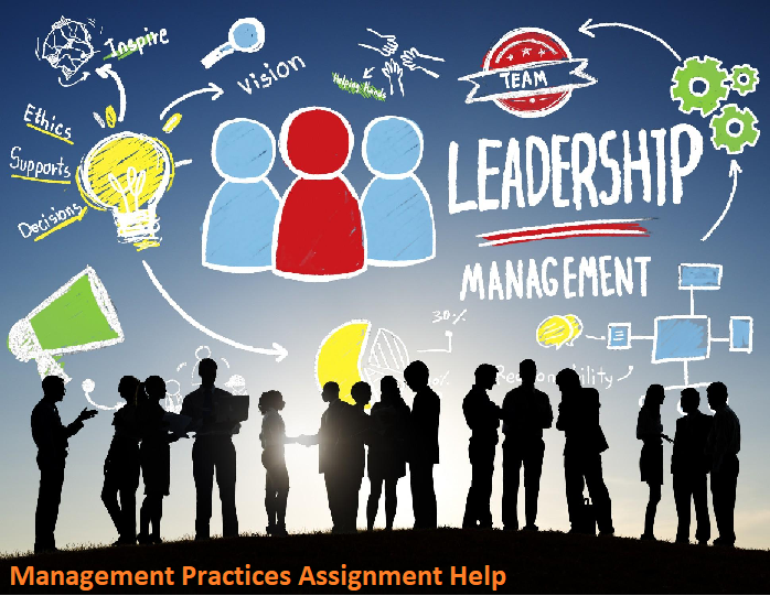 Management Practise Assignment Help