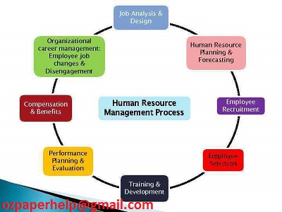 International HR management assignment