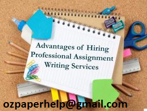 Professional Identity Assignment Help
