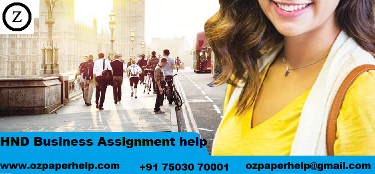 HND Business Assignment help