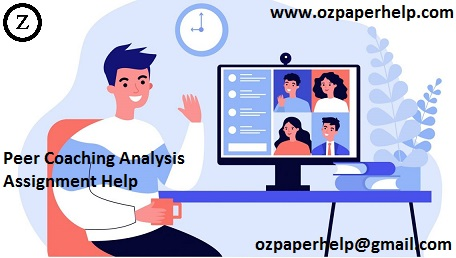 Peer Coaching Analysis Assignment Help