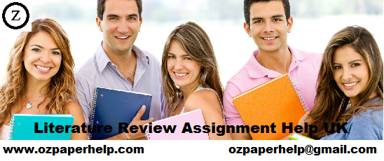 Literature Review Assignment Help UK