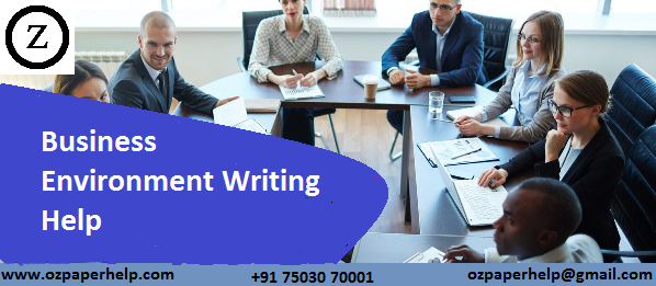 Business Environment Writing Help