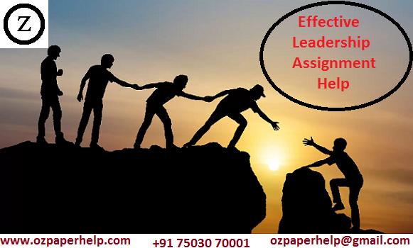 Effective Leadership Assignment Help