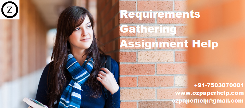 Requirements Gathering Assignment Help