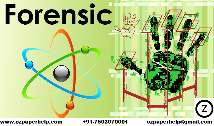 Forensic Investigation Assignment Help