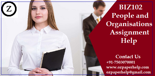 BIZ102 People and Organisations Assignment Help