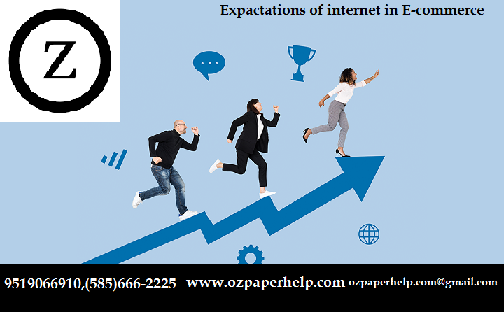 EXPECTATIONS OF INTERNET IN E-COMMERCE