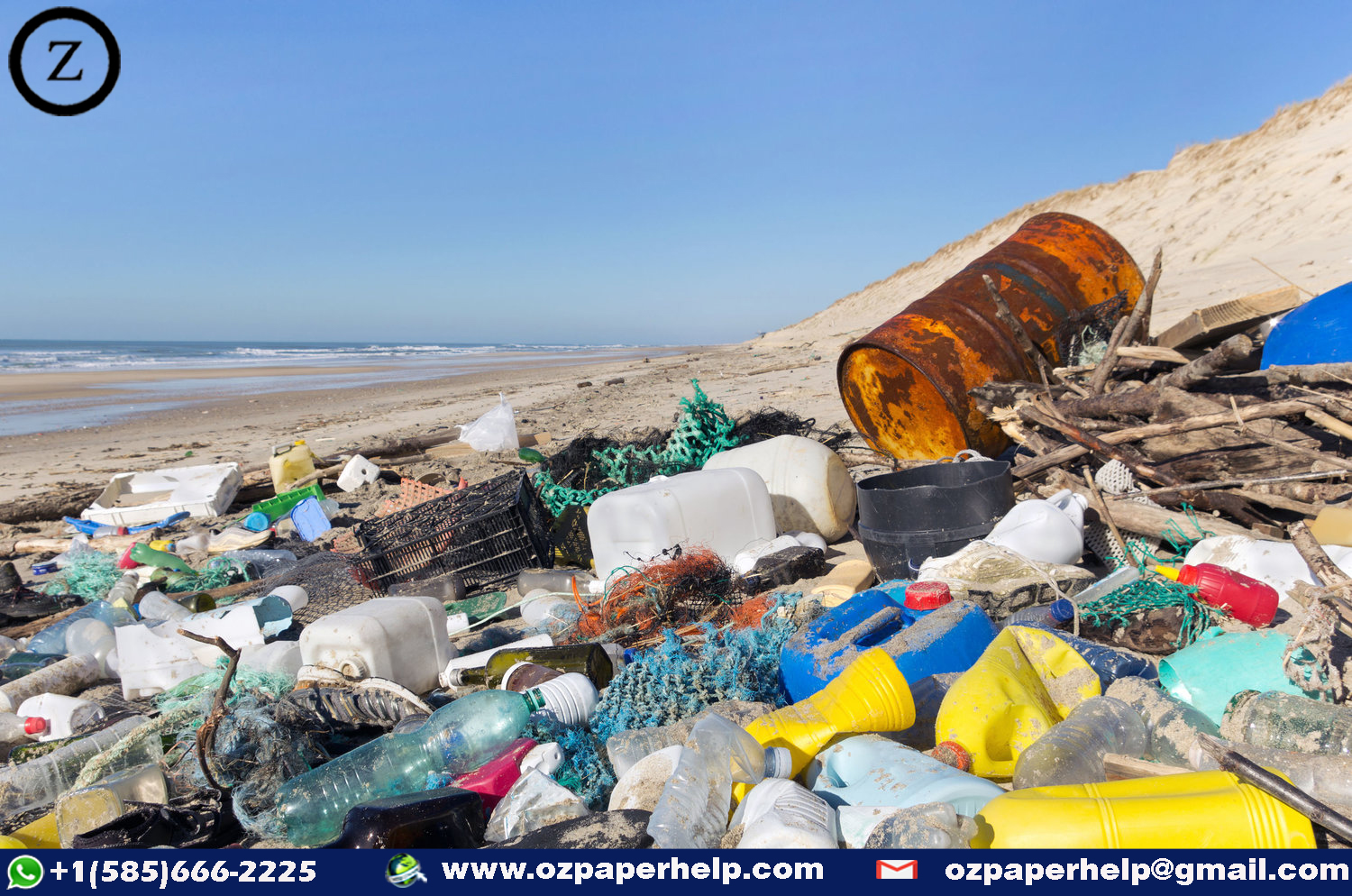 Plastic Pollution Assignment Help