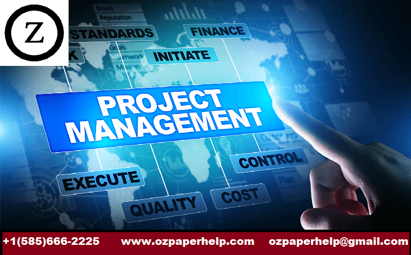 INF30019 Information Systems Project Management
