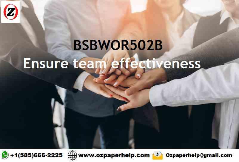 BSBWOR502B Ensure team effectiveness