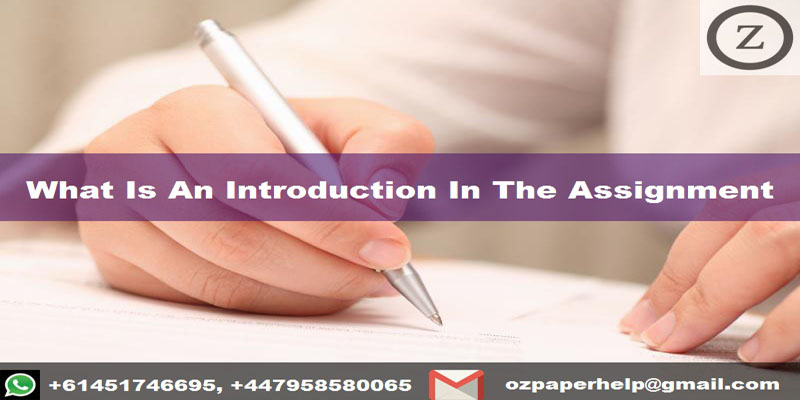 What Is An Introduction In The Assignment