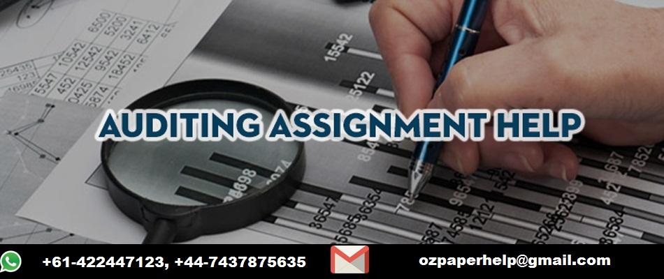 Auditing Assignment Help Service