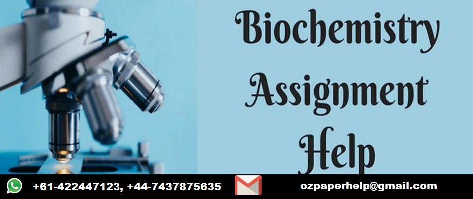 Biochemistry Assignment Help Service