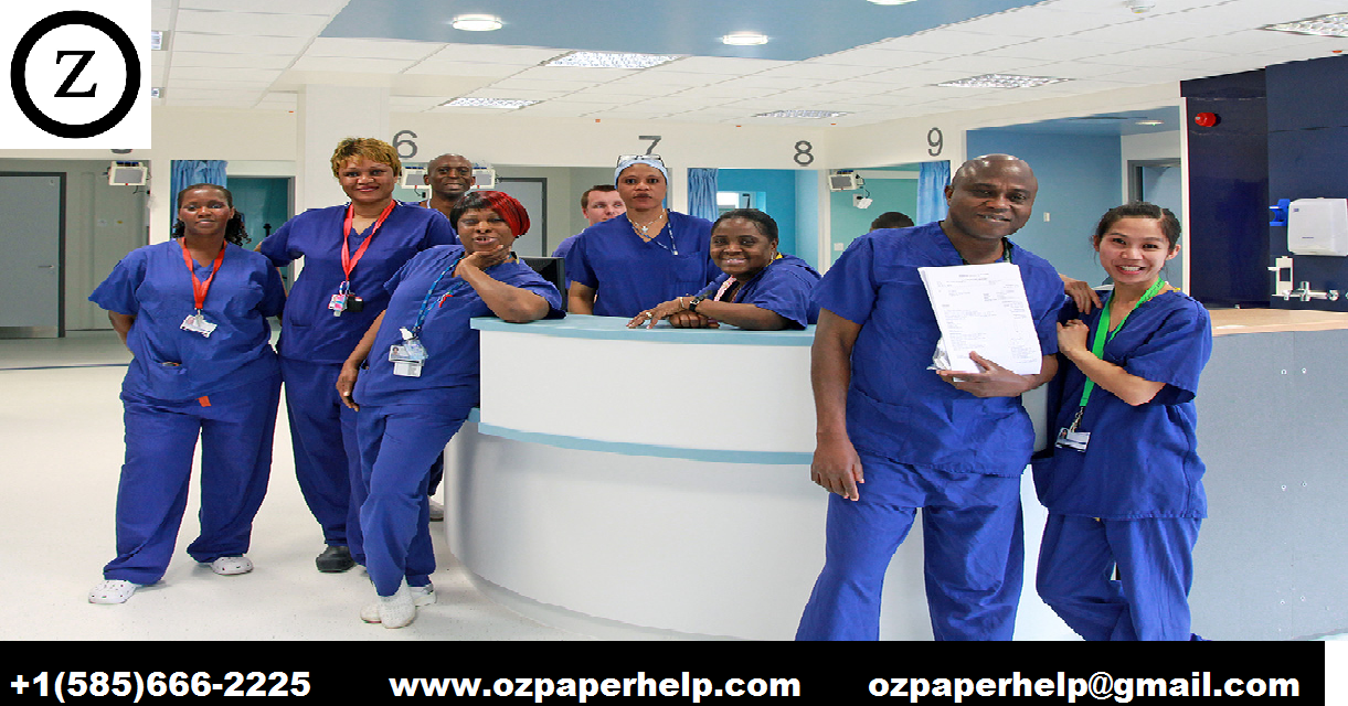 Maternity Service Delivering Assignment help