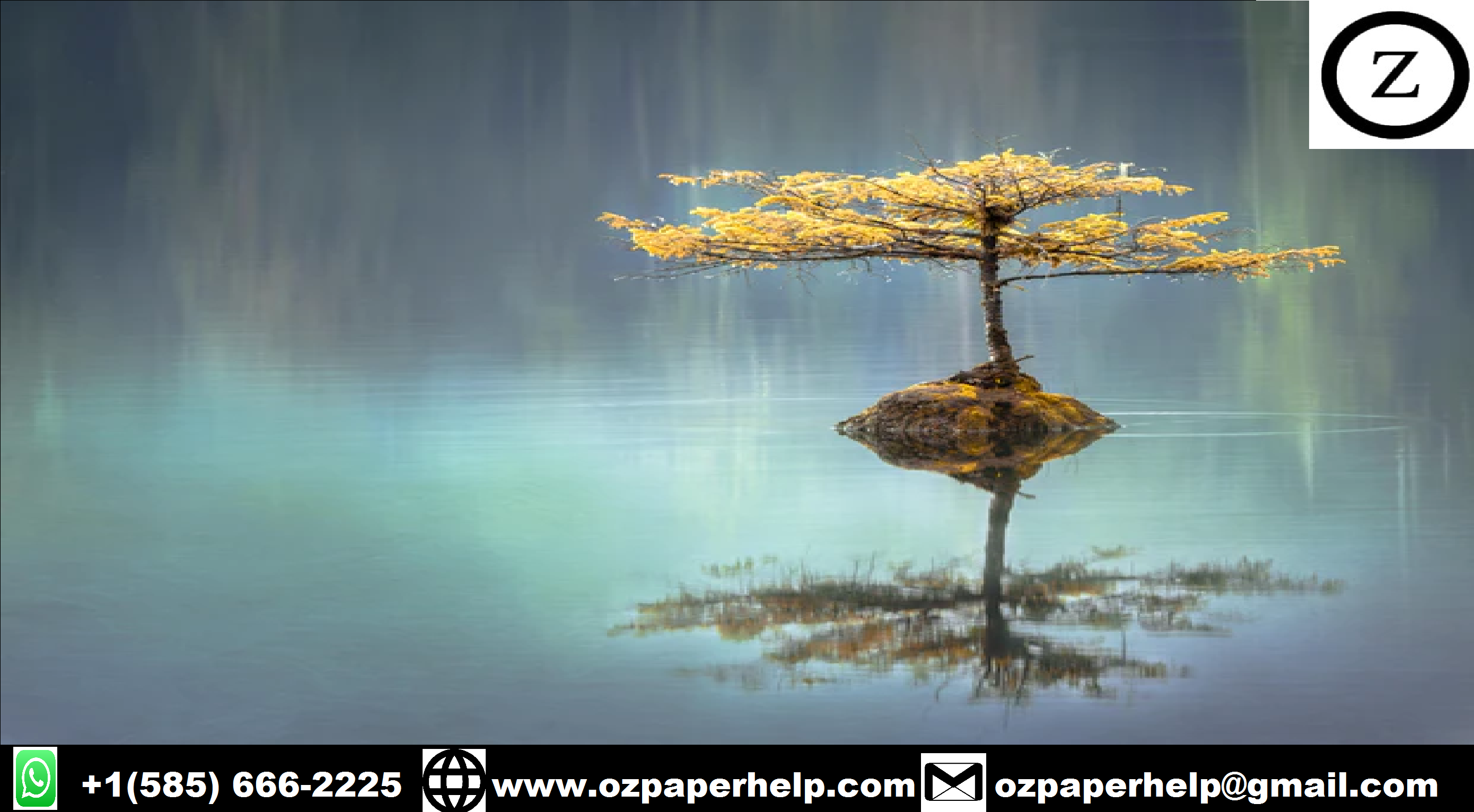 REFLECTIVE WRITING ASSIGNMENT HELP