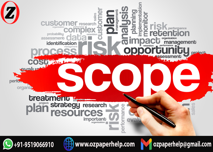 Business Scope Assignment Help UK