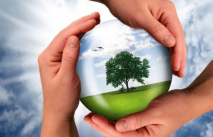 IMPLEMENT AND MONITOR ENVIRONMENTALLY SUSTAINABLE PRACTICES
