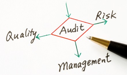 Corporate Governance Role of Auditors