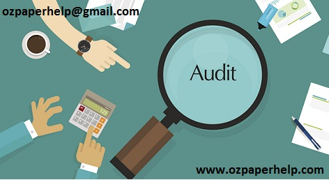 Company Audit Assignment help