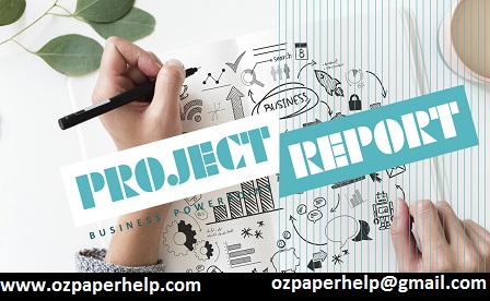 BU52014 Project Report Assignment Help