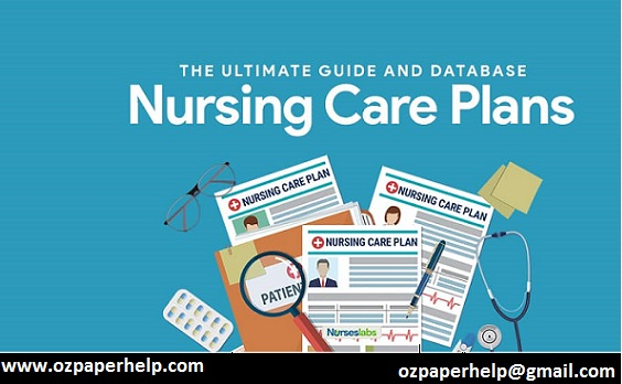 Nursing Care Plan Assignment Help